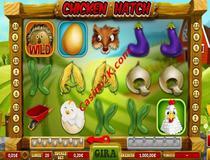 Chicken Hatch