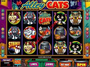 Alley Cats