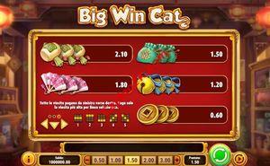 pagamenti Big Win Cat