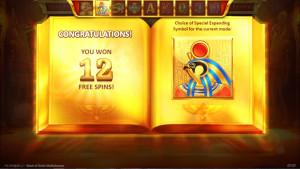 bonus Book of Gold Multichance