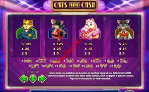 pagamenti Cats and Cash
