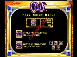 bonus Cats