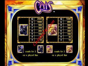 pagamenti Cats