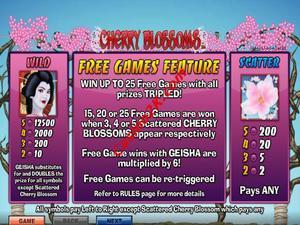bonus Cherry Blossom