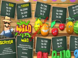 pagamenti Funky Fruits Farm
