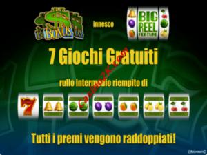 bonus Giant 7