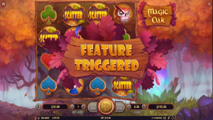 bonus Magic Oak