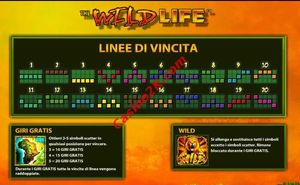 bonus The Wild Life