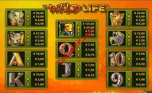 pagamenti The Wild Life