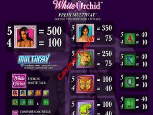 pagamenti White Orchid
