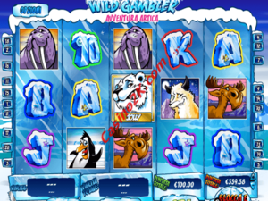 Wild Gambler 2