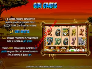 bonus Wild Gambler